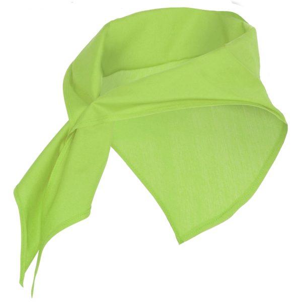 Pañuelo Triangular Jaranero Roly - Verde Mantis